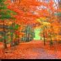 M+Virginia State Parks 01 (30)
